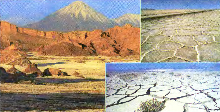 Пустыни и полупустыни Южной Америки География Реферат доклад  Пустыня Атакама